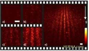 تک مولکول در فیلم کوانتومی